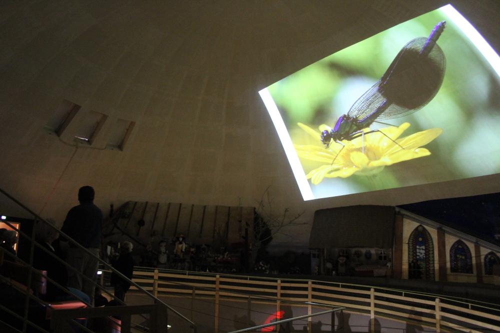 Projection sous le dôme sur la Biodiversité à la Pyramide du Loup