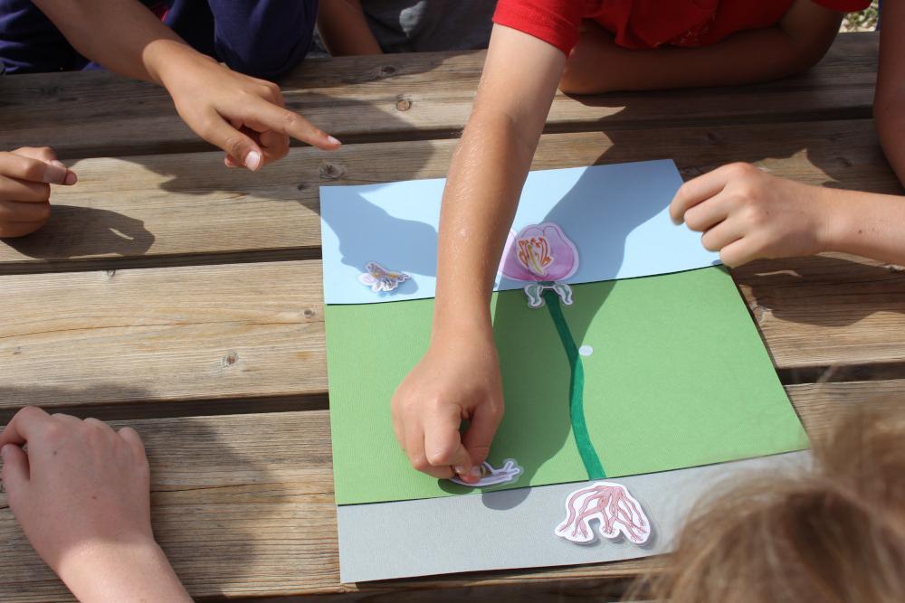Animation avec les enfants à la Pyramide du Loup