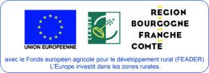 Logo Fond Européen Agricole pour le Développement Rural (FEADER)