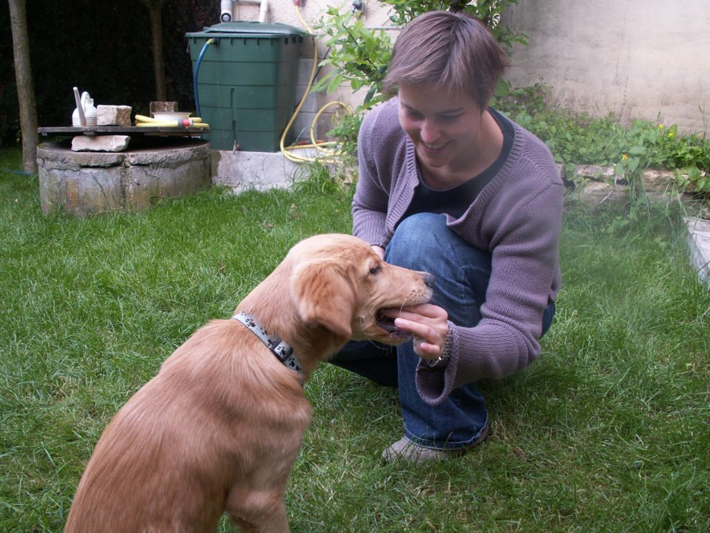 Sandrine Debailleux, comportementaliste chiens/chats