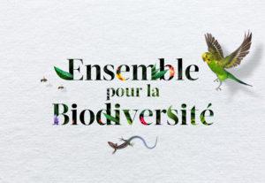 https://www.helloasso.com/associations/sur-les-traces-du-loup/collectes/amenagement-d-un-jardin-potager-en-permaculture Pyramide du Loup