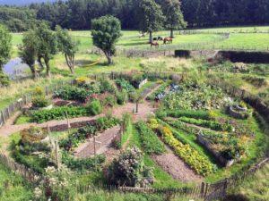 Projet participatif d'un Jardin en Permaculture Pyramide du Loup
