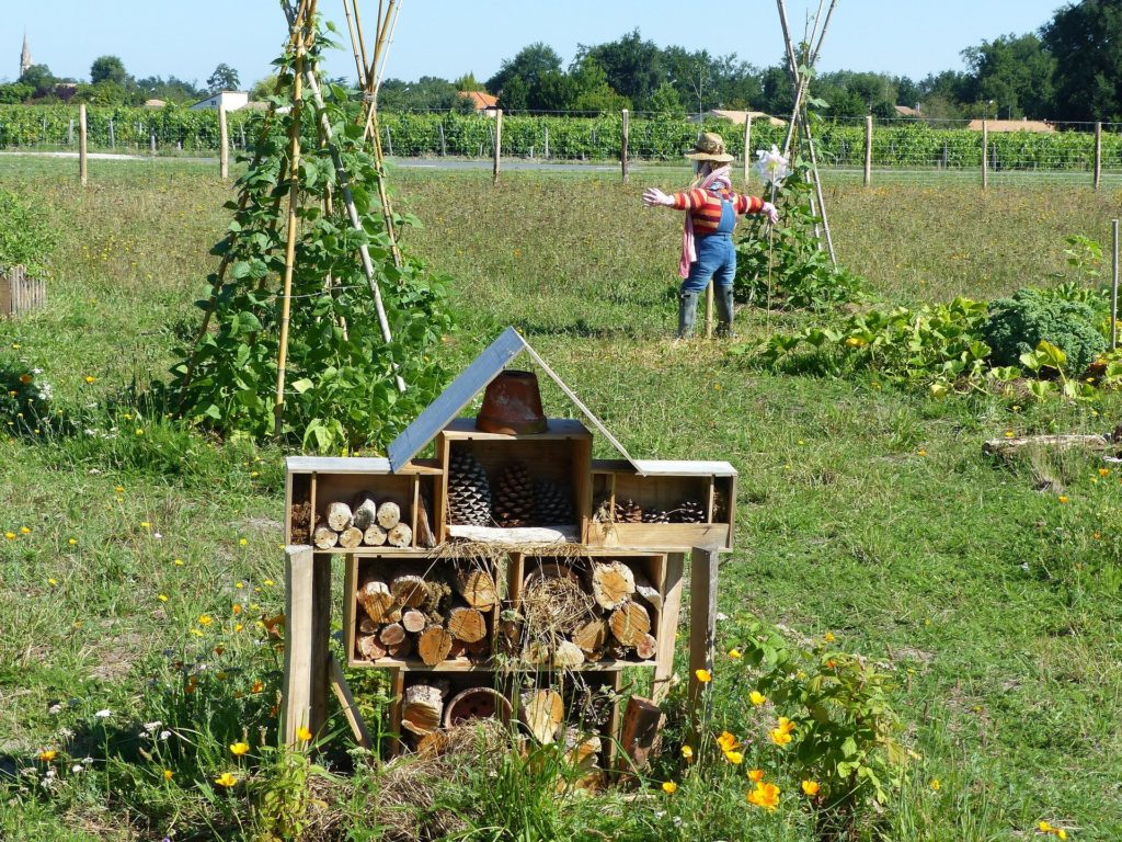 Permaculture Pyramide du Loup